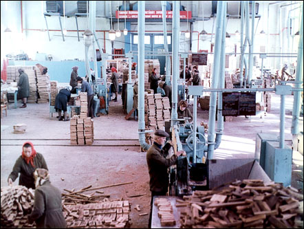 workers of  block parquet workshop of the Kivertsy wood processing enterprise in Soviet Union time